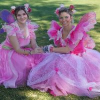 Enchanted Faires